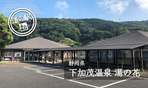 静岡県道の駅下加茂温泉湯の花