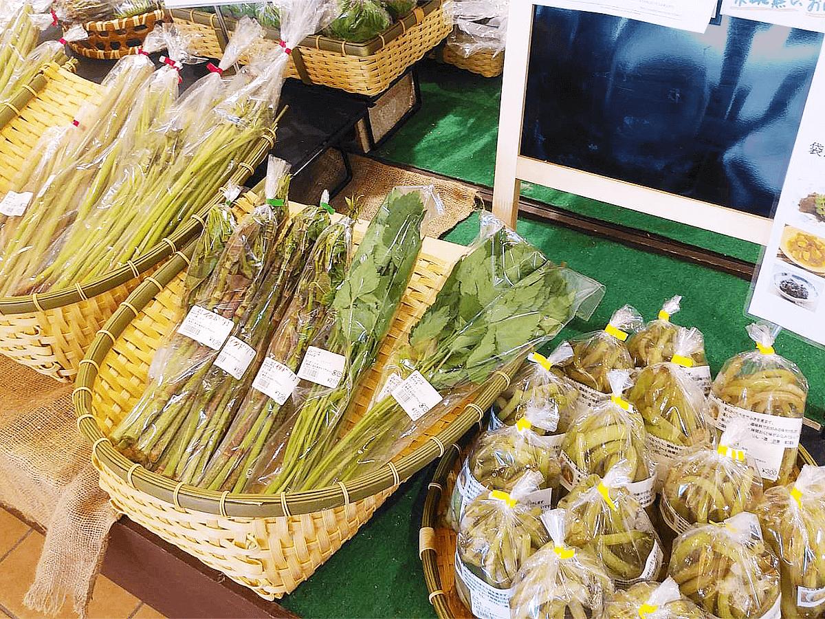 道の駅たかの山菜