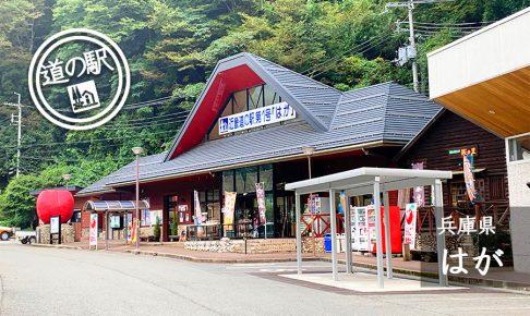 兵庫県道の駅はが