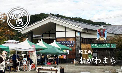 埼玉県道の駅おがわまち