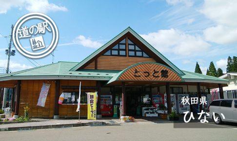 秋田県道の駅ひない